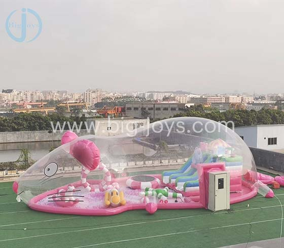 Inflatable Transparent Pink Pig